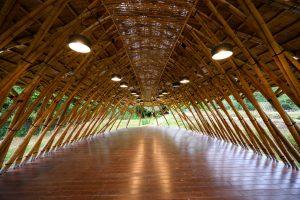 D.Z. Architects & Associates
